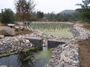 Demonstration Wetlands Teaching Area.jpg