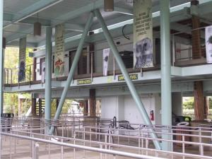 Bus Transportation Center Inside Queue.jpg